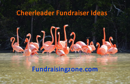 Cheerleader Fundraising Ideas from Nevada: Pink Flamingos
