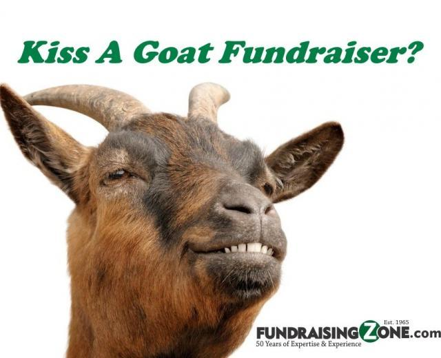 kiss a goat fundraising ideas 1